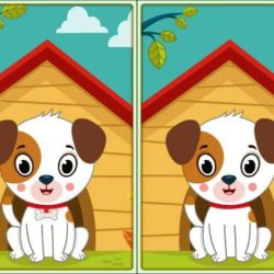 Spot 5 Differences