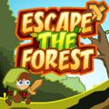 Bijeg iz šume