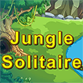 Džungla soliter